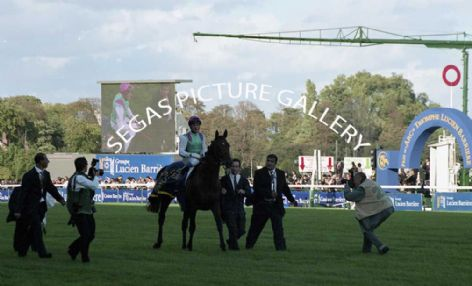 Racehorse Rail Link with Jockey, Stephane Pasquier